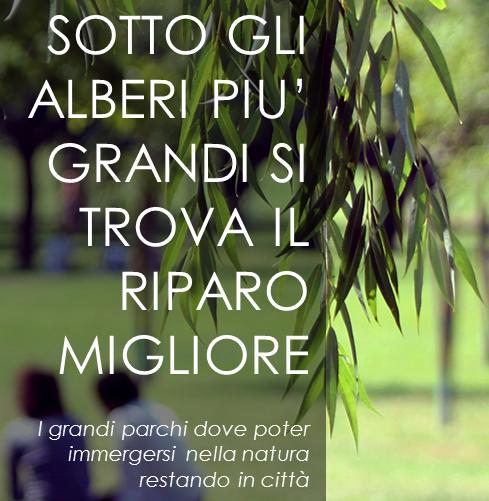 http://manoxmano.it/milano/wp-content/uploads/2015/10/sotto-gli-alberi-più-grandi-si-trova-il-riparo-migliore.png
