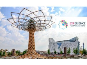 experience post expo