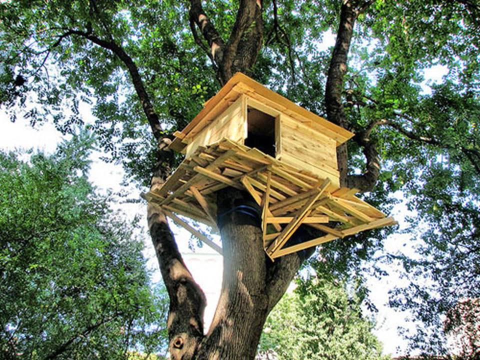 Costruiamo tutti insieme una casa sull 39 albero manoxmano - Costruire una casa sull albero ...